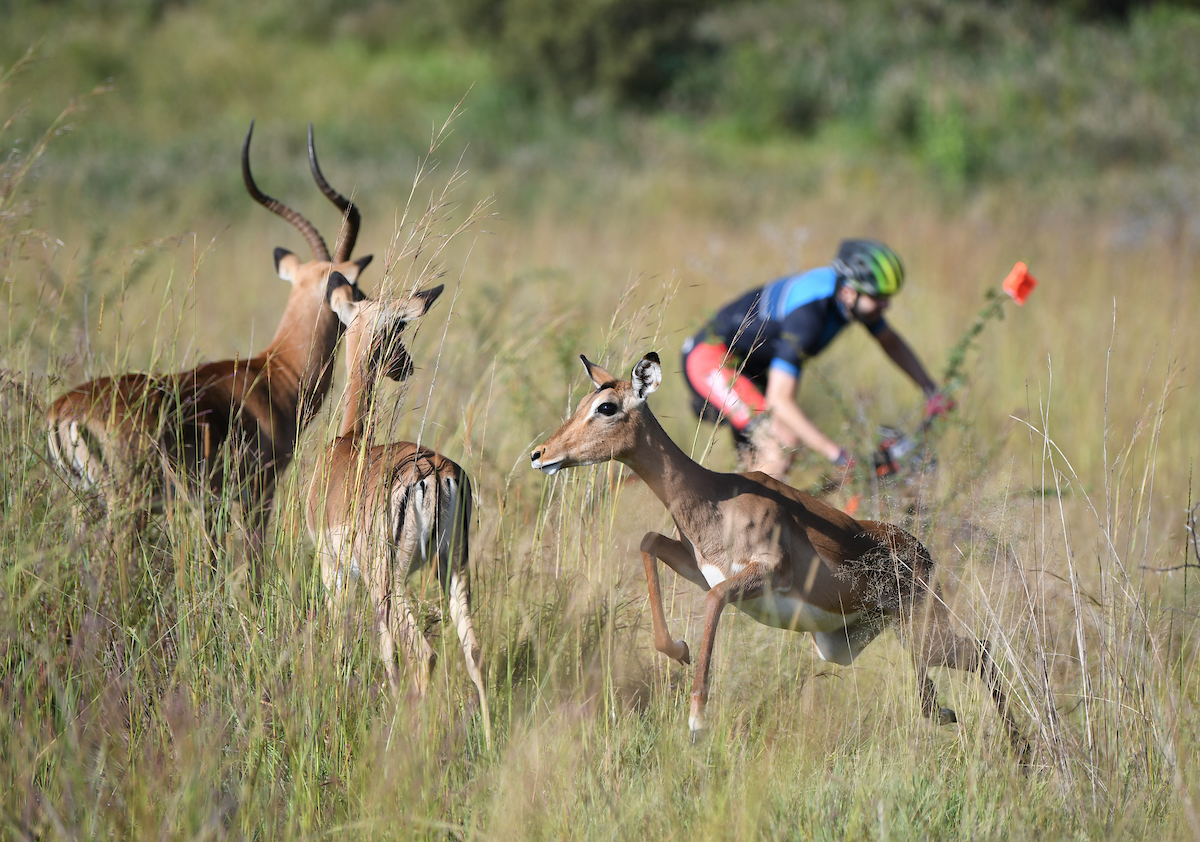 MOUNTAIN BIKERS DISCOVER GAUTENG'S BEST KEPT SECRET AT GLACIER CRADLE TRAVERSE